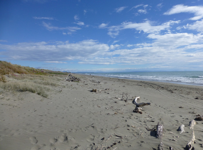 New Brighton Beach, Christchurch