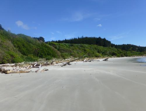 Strand bei Shagpoint 5, Neuseeland, Südinsel