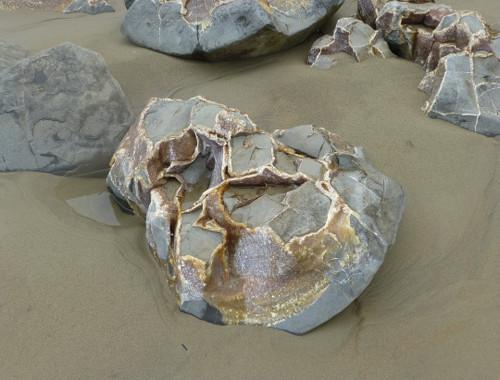 Moeraki Boulders 5