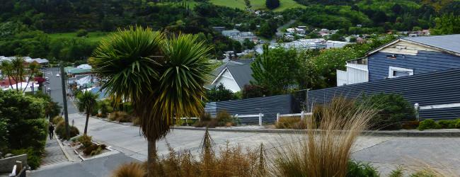 Dunedin entdecken Teil 3