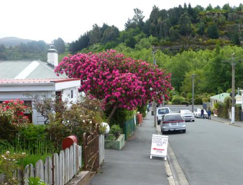 Baldwinstreet Dunedin-Zertifikat Shop
