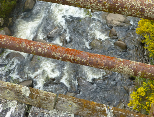 Dunedin. Taeri Gorge, Deep Stream 10