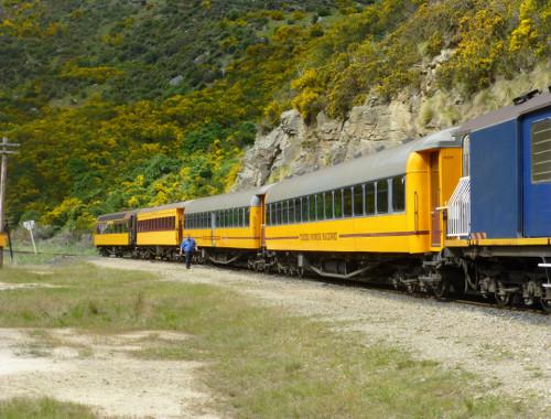 Dunedin. Taeri Gorge, Deep Stream 4