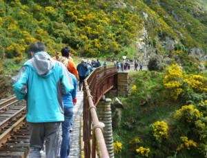 Dunedin. Taeri Gorge, Deep Stream 8