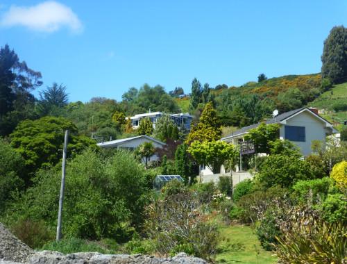 Dunedin-Taeri Gorge, an der Strecke 1
