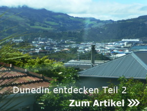 Dunedin entdecken Teil 2
