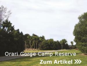 Orari Gorge Camp Reserve