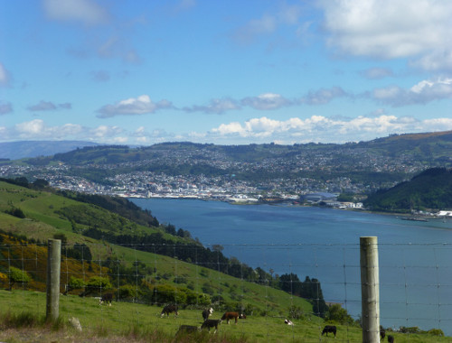 Otago Peninsula Highcliff Road Dunedin