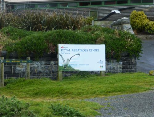 Am Royal Albatros Center 1