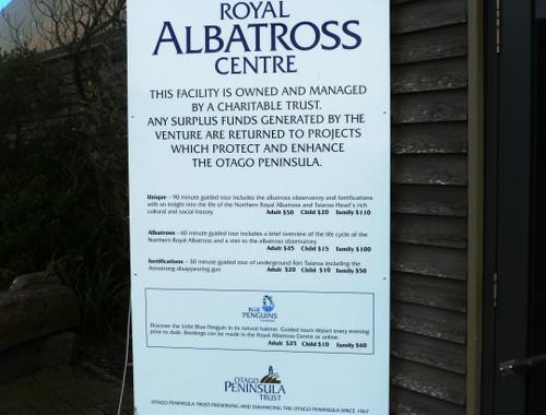am Royal Albatros Center 15