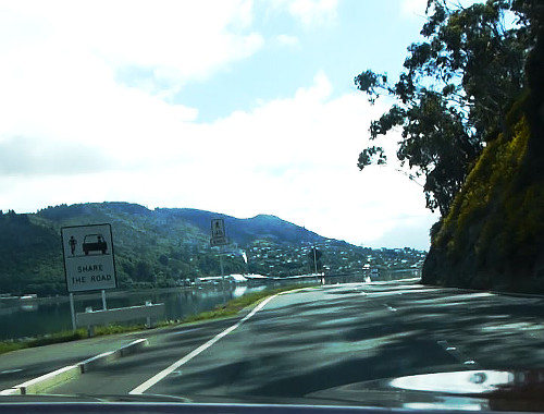 Otago Peninsula, Straße zum Albatross Center 1