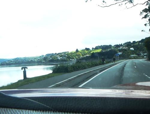 Otago Peninsula, Straße zum Albatross Center 2