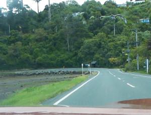 Otago Peninsula, Straße zum Albatross Center