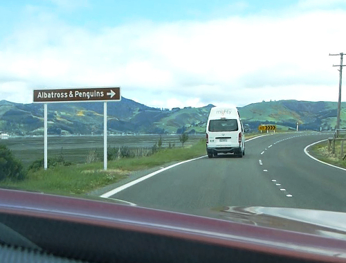 Otago Peninsula, Straße zum Albatross Center 7