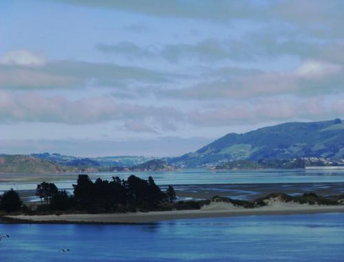 Otago Peninsula. Blick nach Dunedin