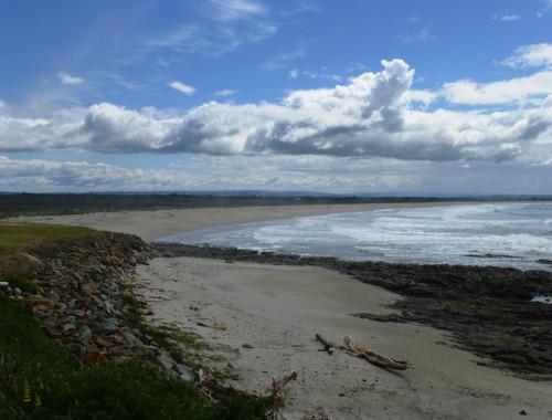 Kaka Point-Ostküste Neuseeland 1