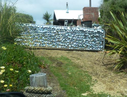 Kaka Point-Ostküste Neuseeland 2