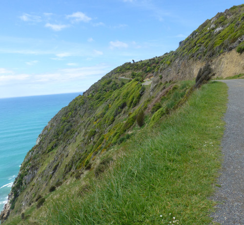 Nugget Point-Südinsel-Ostküste Neuseeland