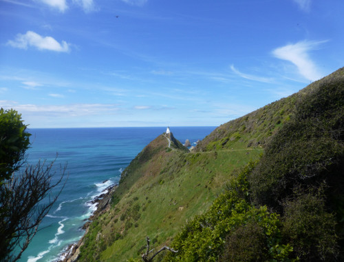 Nugget Point-Südinsel-Ostküste Neuseeland 3