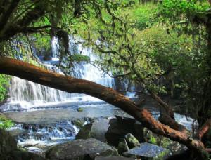 Purakaunui-Falls