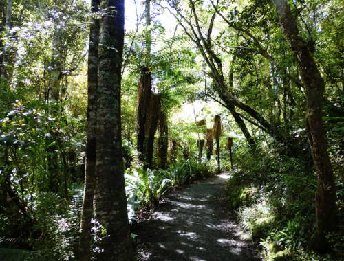 Weg zu den Purakaunui Wasserfällen