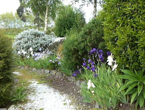 Lignite-Pit Scenic Stop, Weg im Garten