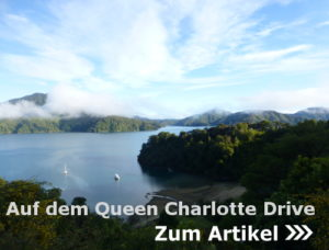 Auf dem Queen Charlotte Drive durch die Marlborough Sounds