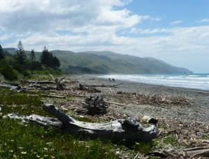 Gore Bay Beach 1
