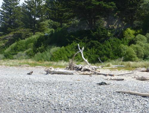 Gore Bay Beach 9