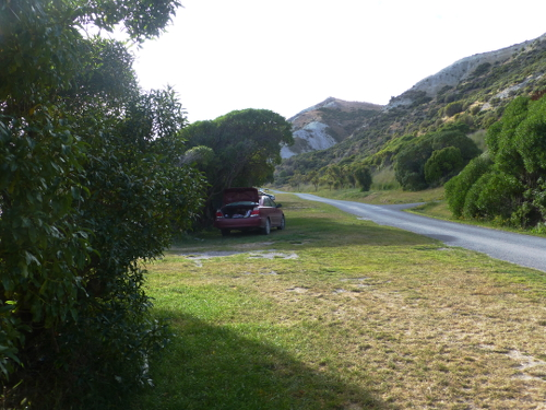 Marfells Beach NZ, am Campingplatz 2