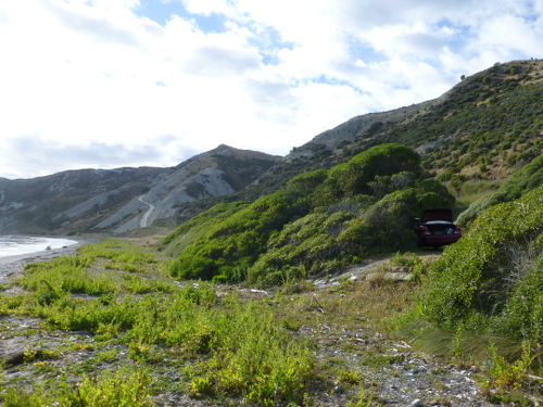 Marfells Beach NZ, am Campingplatz 3