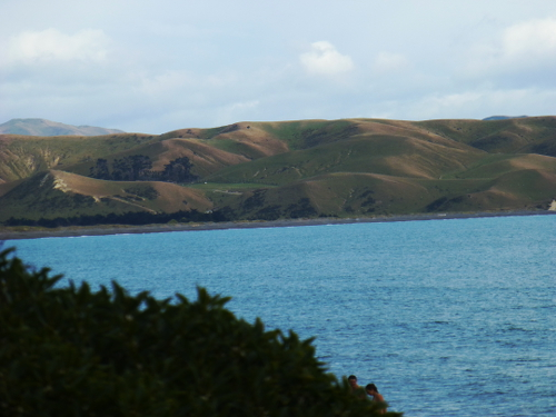 Marfells Beach NZ, am Campingplatz 5
