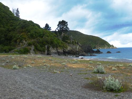 DOC Campingplatz, Rarangi, Neuseeland