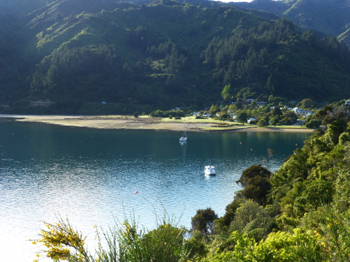 Queen Charlotte Drive, Picton, NZ, Südinsel