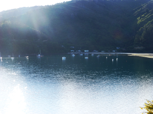 Queen Charlotte Drive, Picton, NZ 14