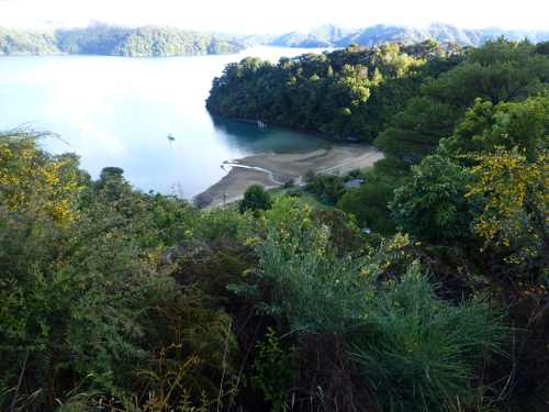 Queen Charlotte Drive, Picton, NZ 20