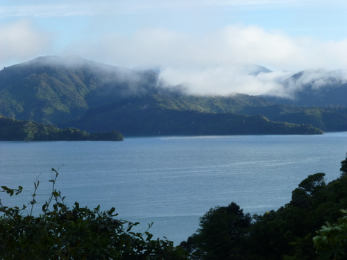 Queen Charlotte Drive, Picton, NZ 3