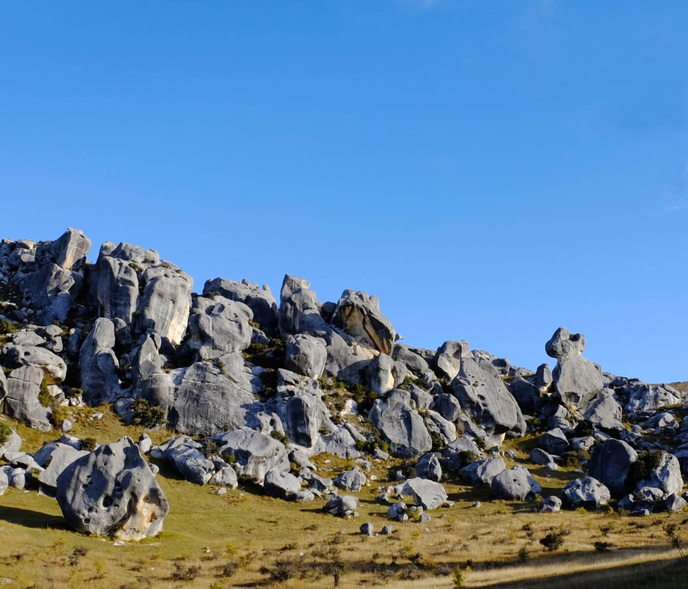 Castle Hill neuseeland 7