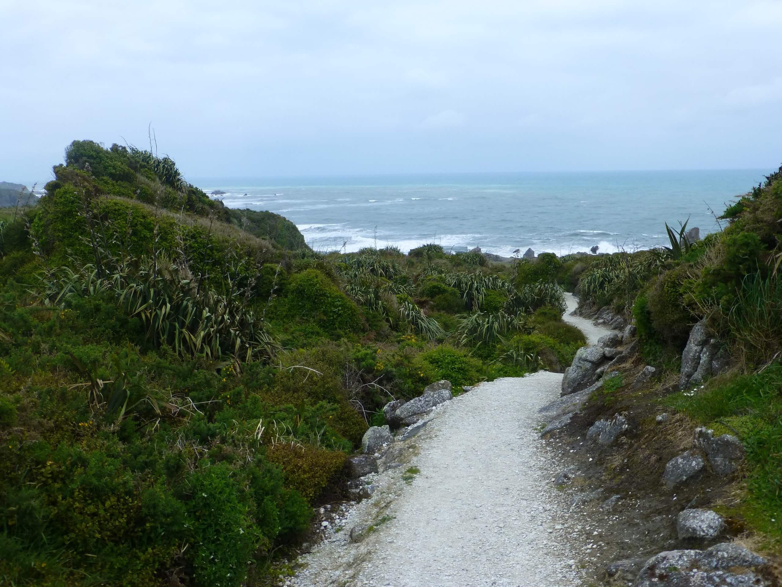 Cape Foulwind, NZ, Westküste 6