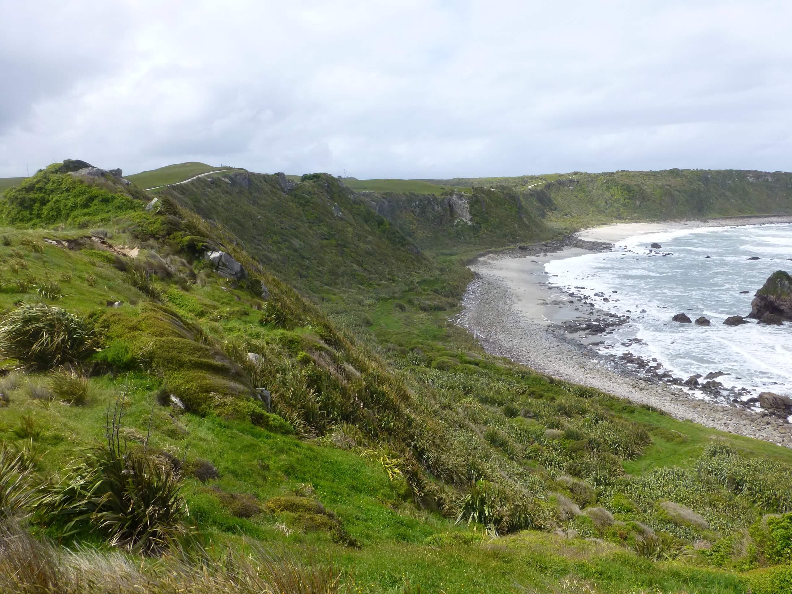 Cape Foulwind, NZ, Westküste 9