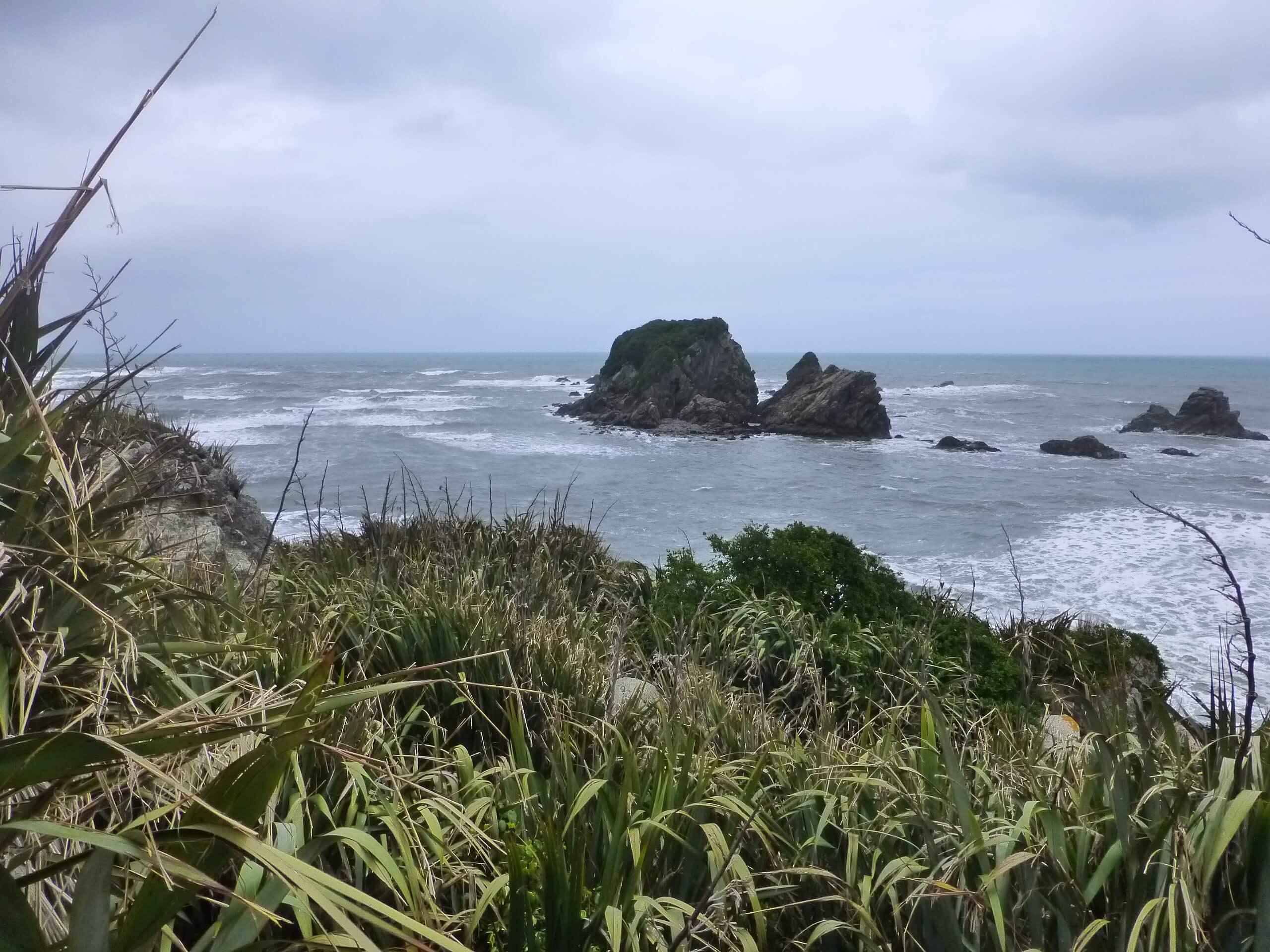 Tauranga Bay, Westküste, NZ 4