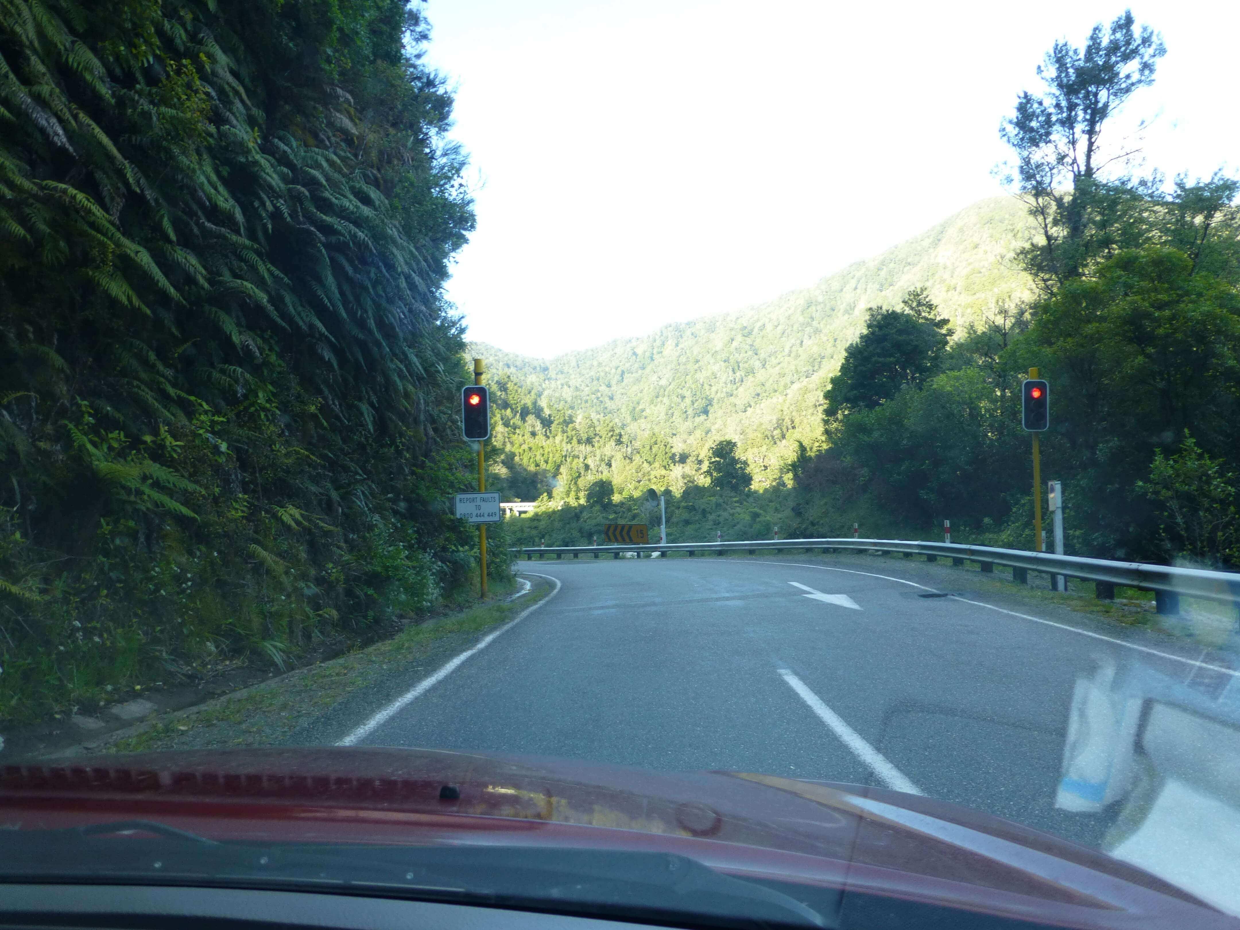 am Kilkenny Lookout, S6, Buller River, NZ 2