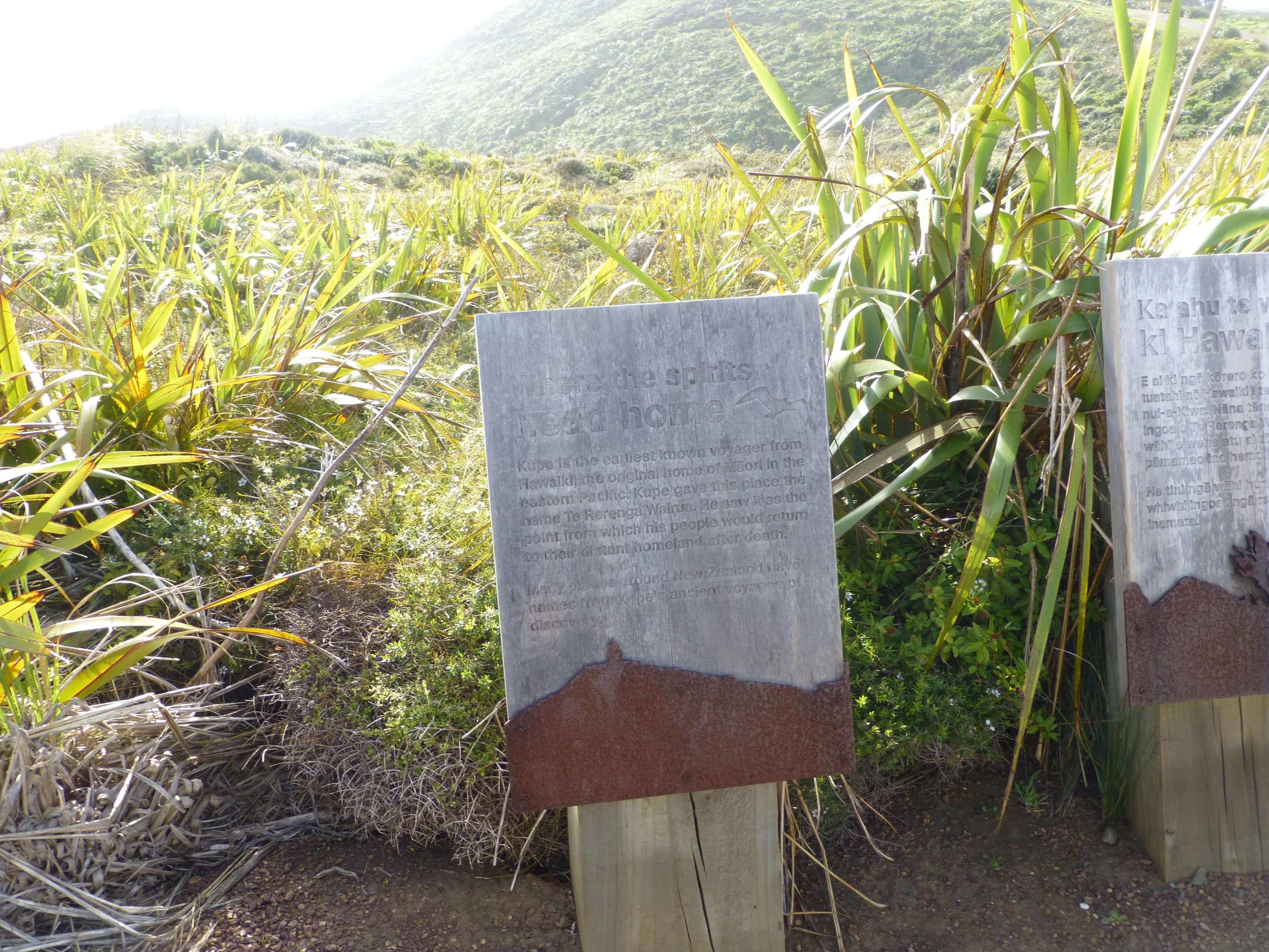 Infotafeln am Cape Reinga 1