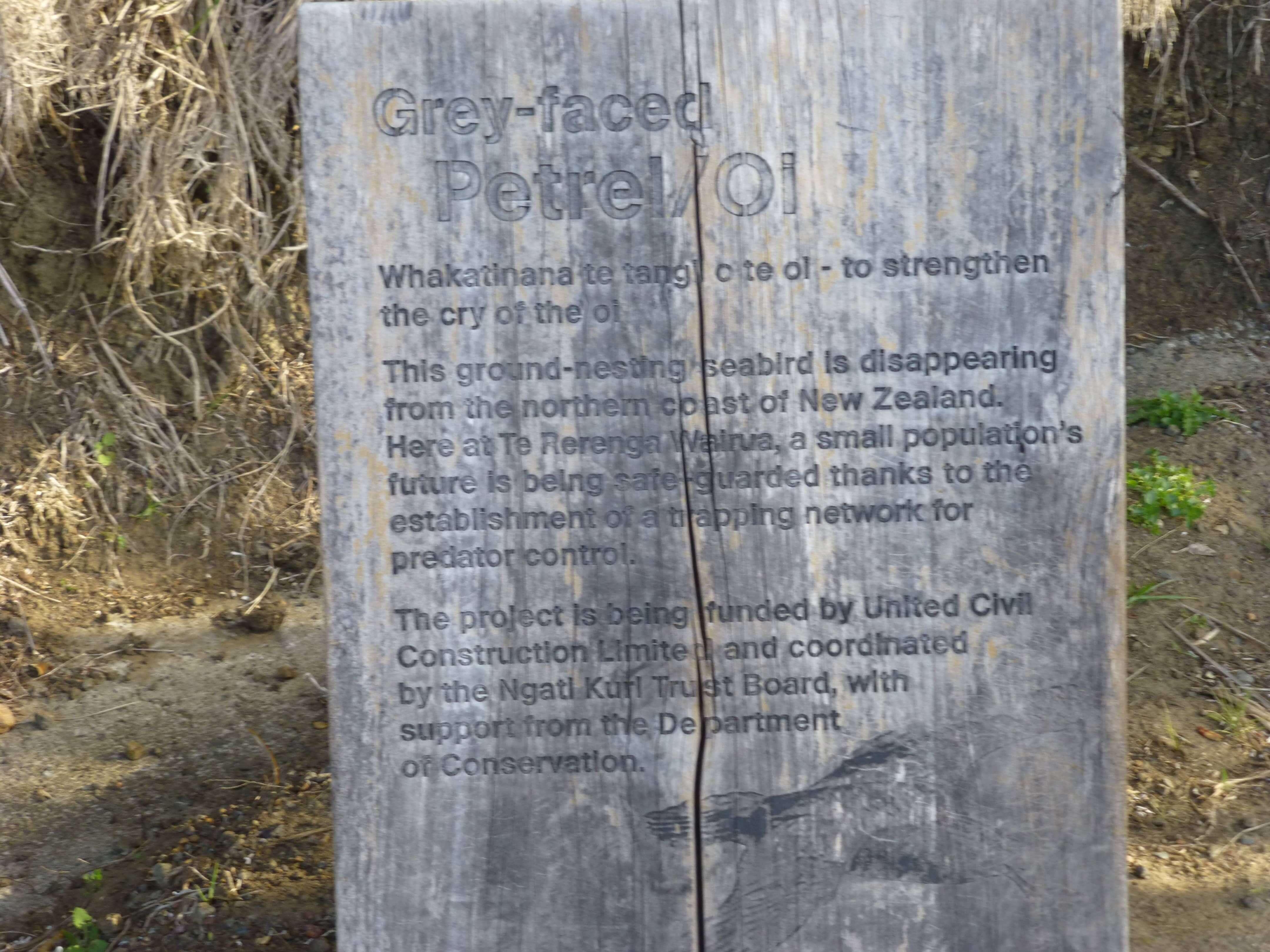Infotafeln am Cape Reinga 19