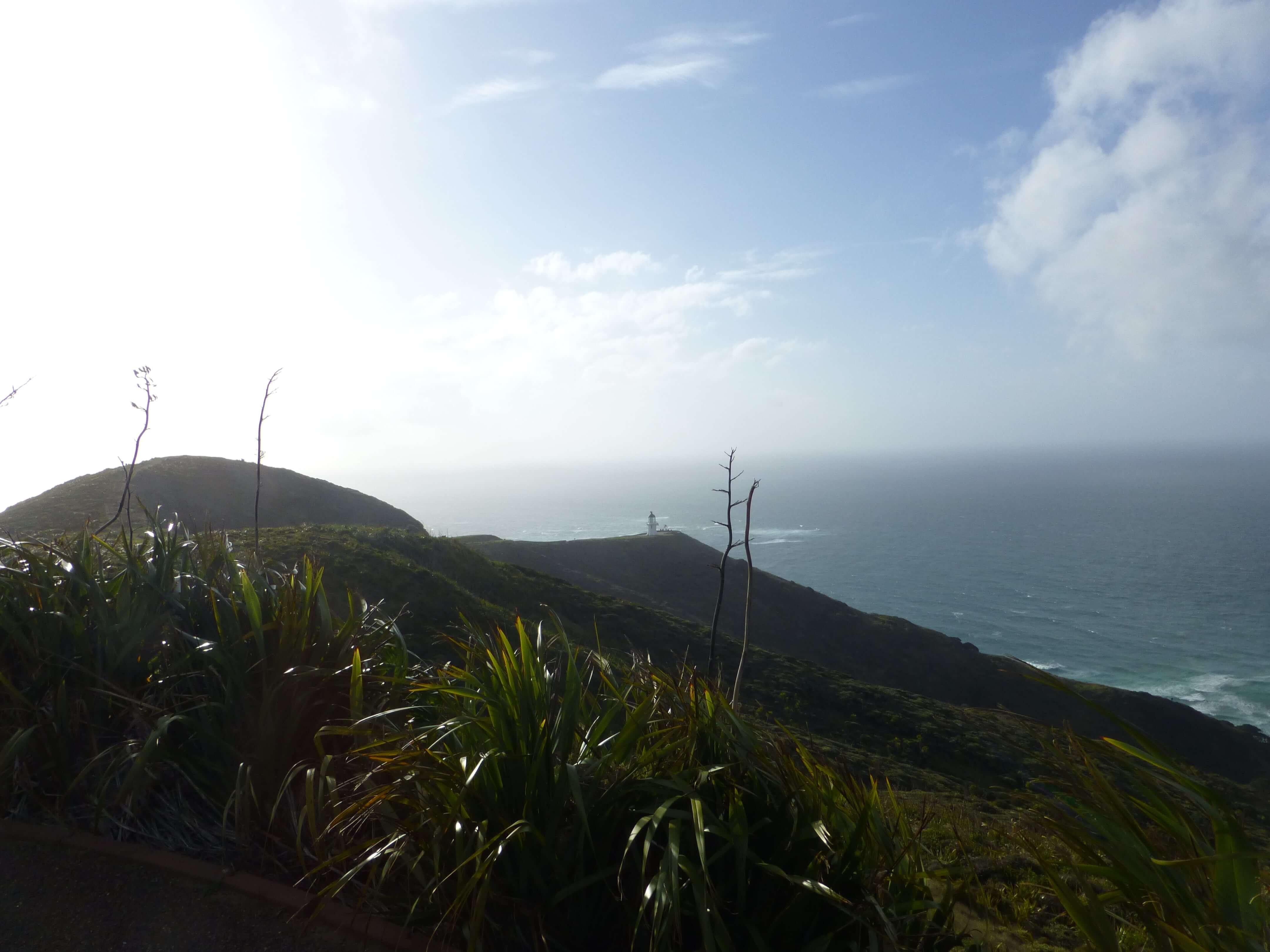 Leuchtturm am Cape Reinga 4
