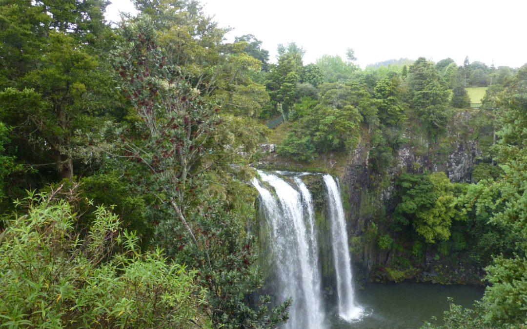 Whangarei entdecken, im Norden Neuseelands
