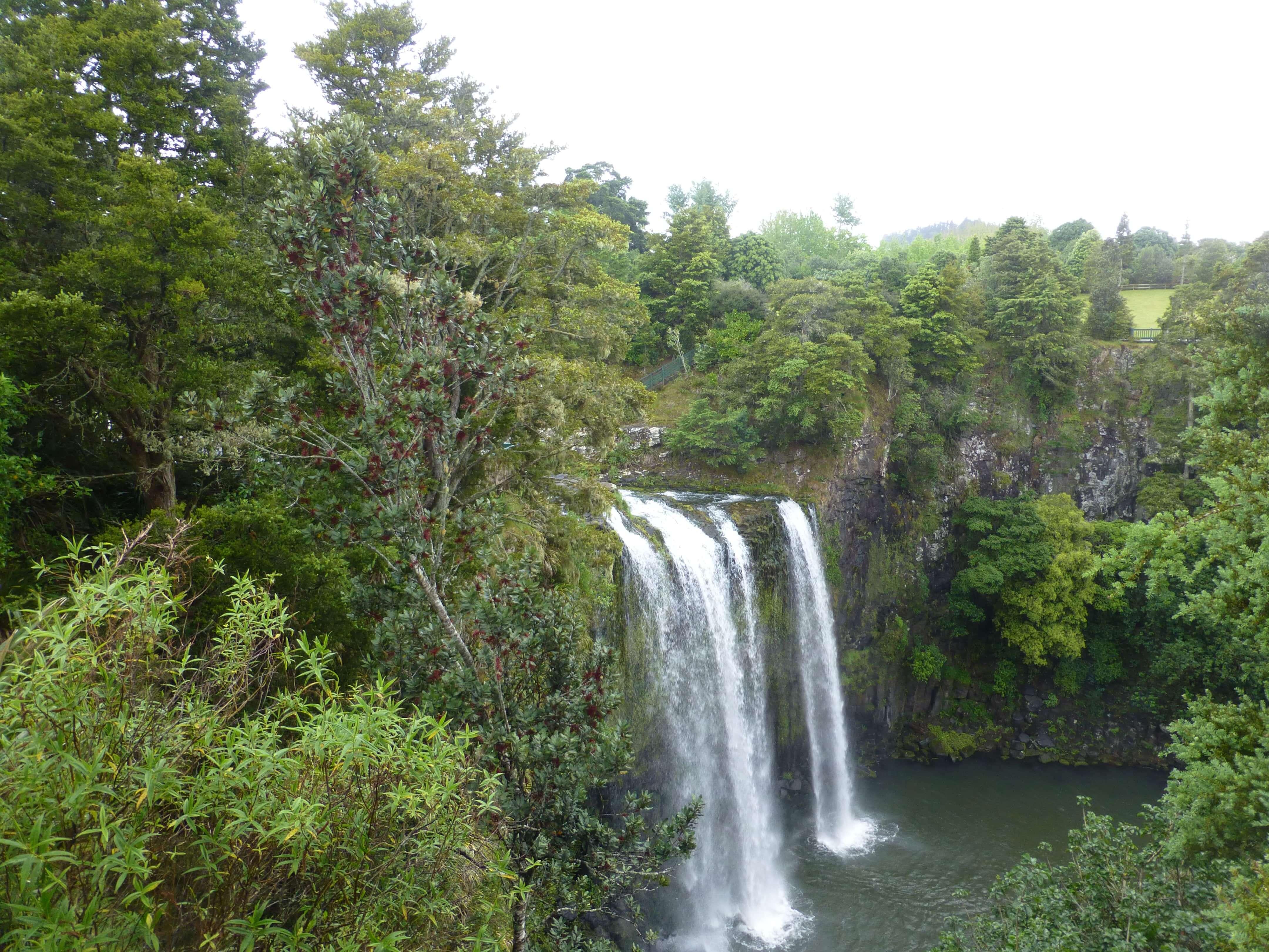 Weit weg Reisen, Whangarei Falls, Neuseeland 2