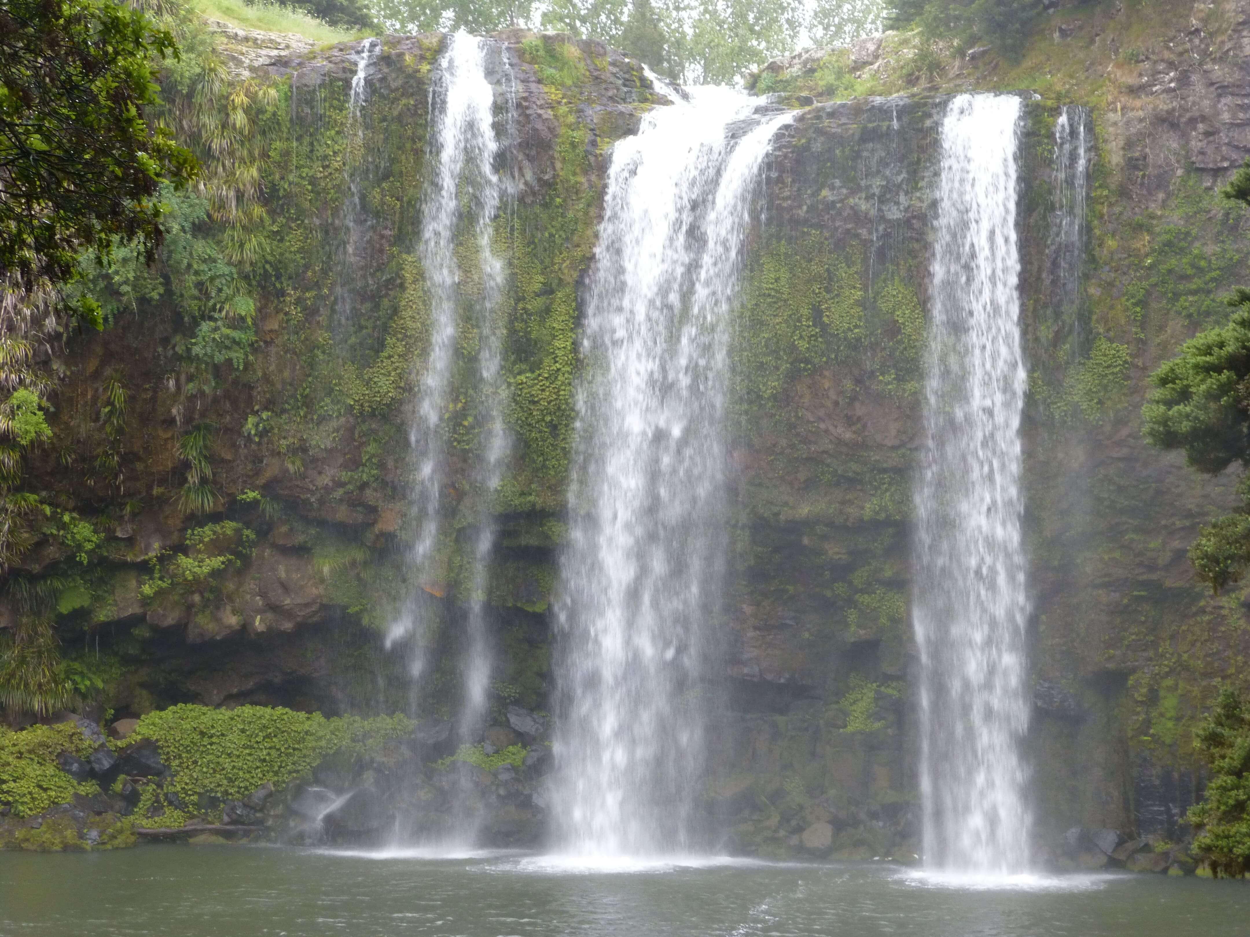 Weit weg Reisen, Whangarei Falls, Neuseeland 7
