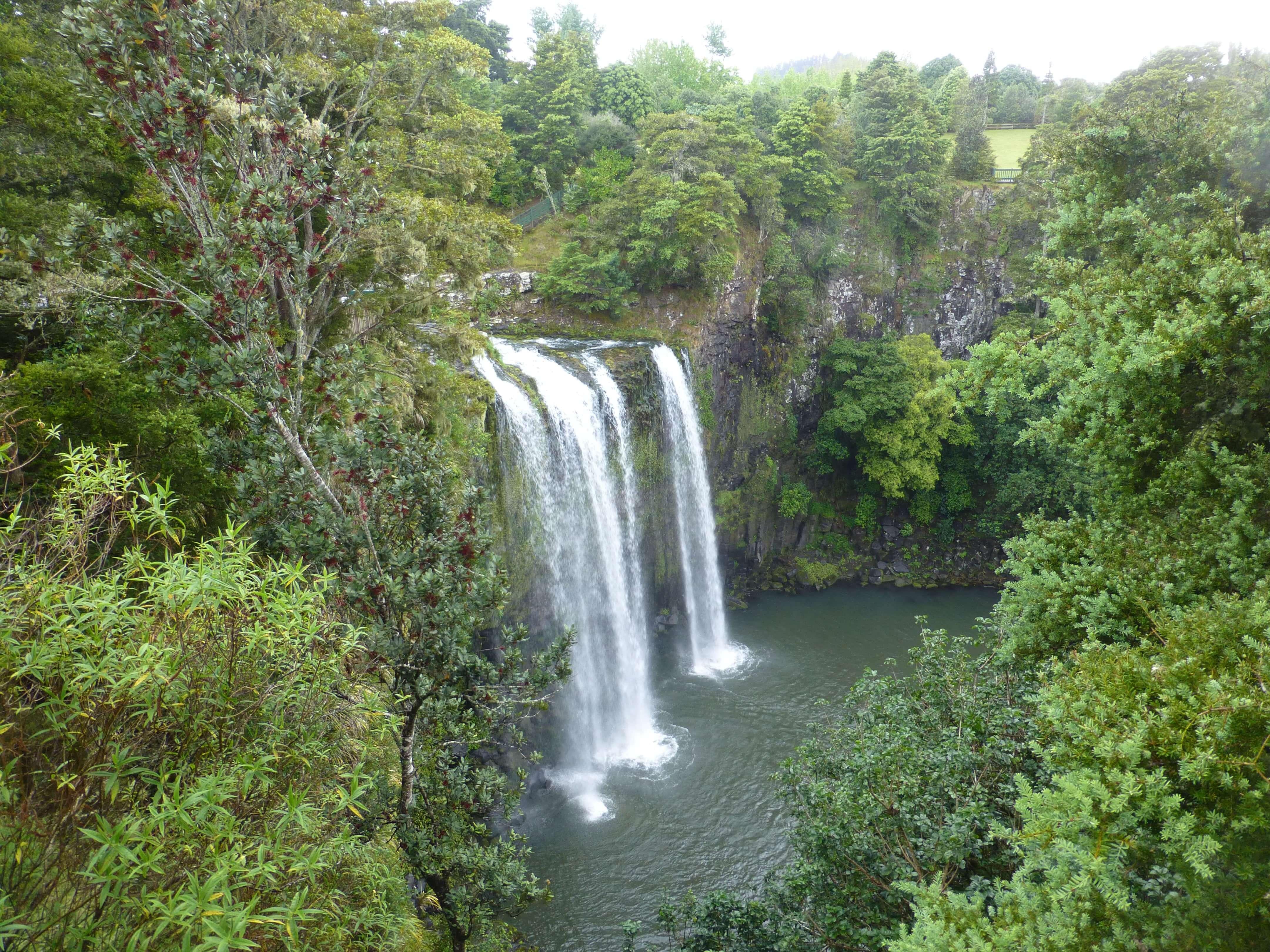Weit weg Reisen, Whangarei Falls, Neuseeland 8
