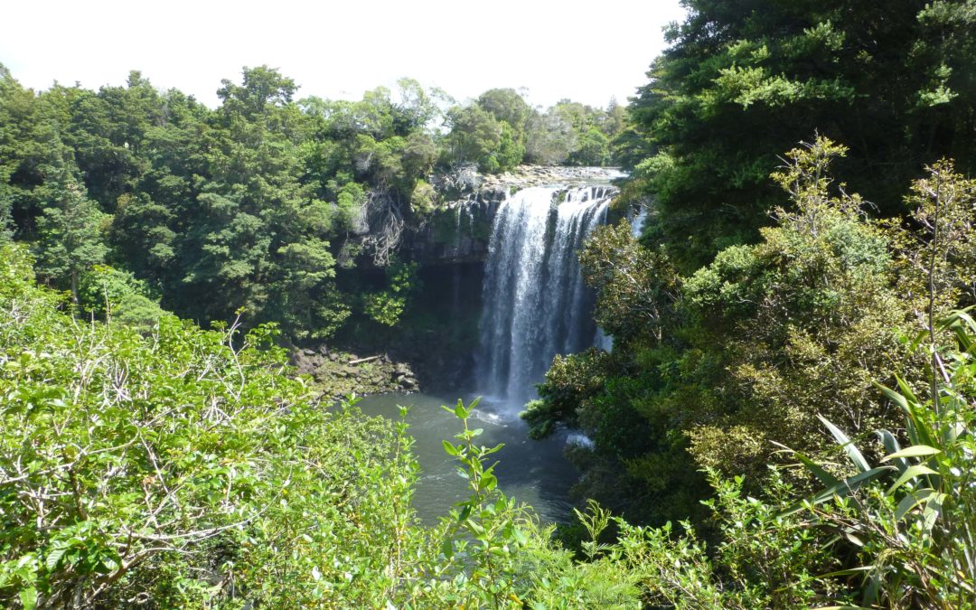 Kerikeri – Nicht nur die Rainbowfalls